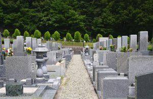 墓地 霊園
